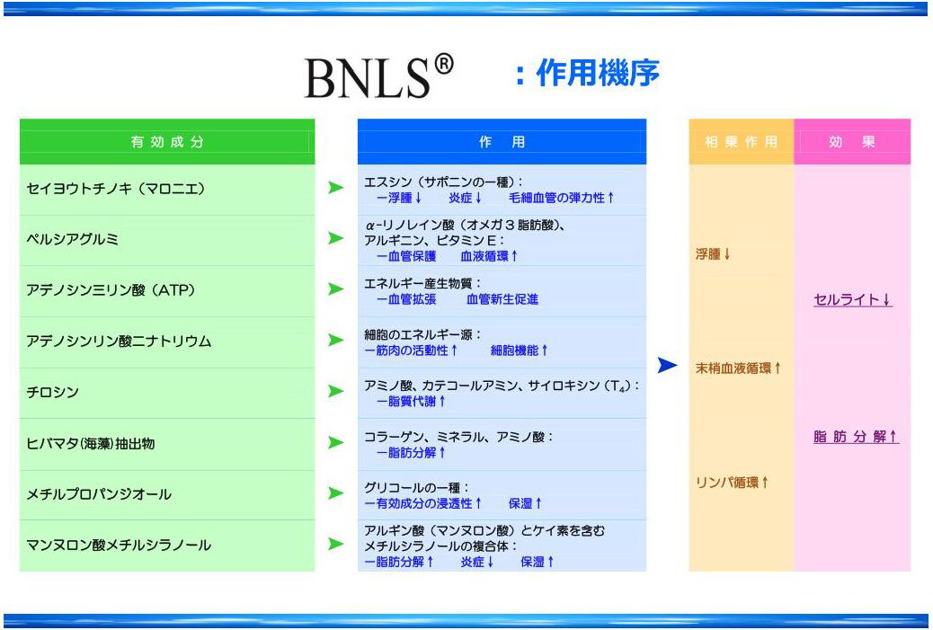 BNLSキャプチャ